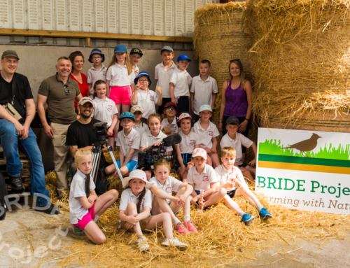 "BRIDE Project features on RTE's ""Eco Eye"" Programme"