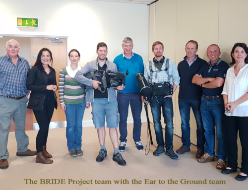 "BRIDE Project on RTE's ""Ear to the Ground"""