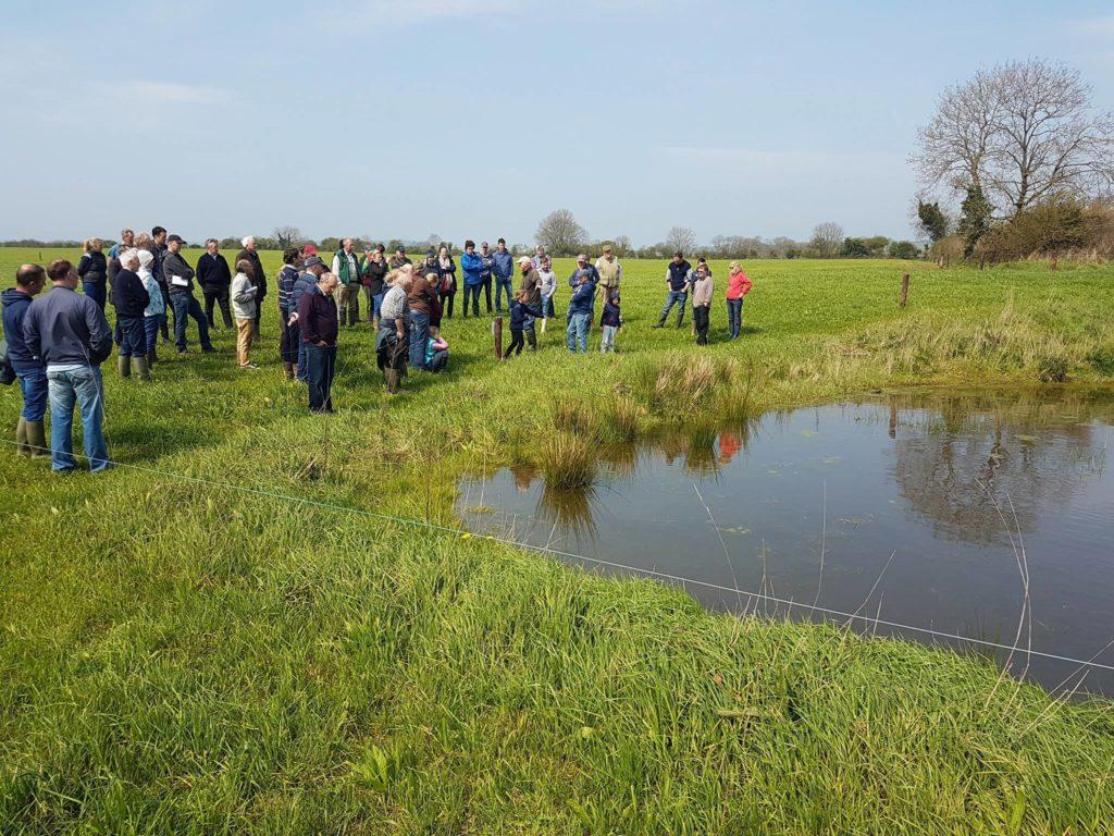 Farm Walk Pond